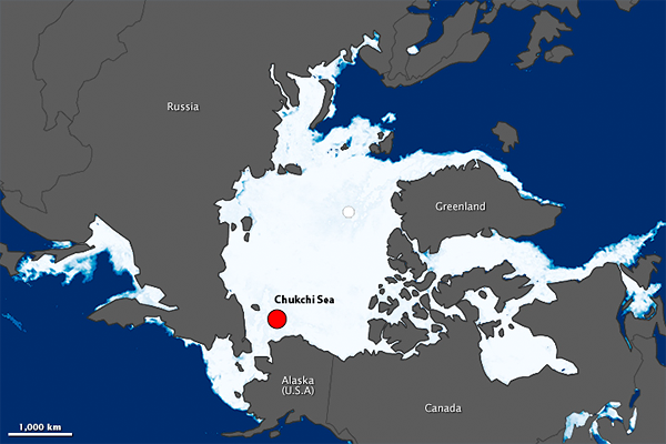Maximum Sea Ice
