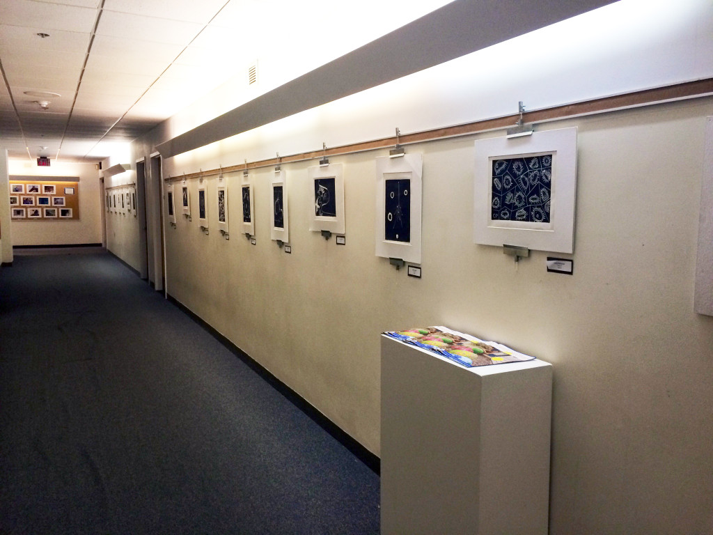 The finished prints displayed at Falmouth Academy
