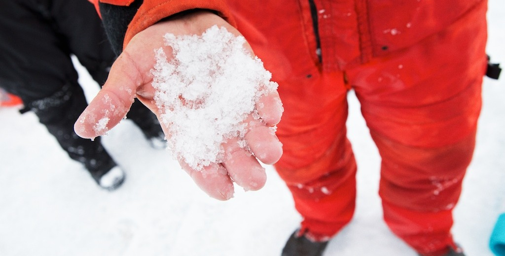 """Chris holding """"melt grain clusters"""" that suggest the onset of the melt back."""
